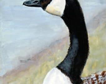 Canadian Goose, Original, Acrylic  Painting