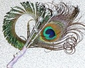 Peacock Feather Boutonniere - groom, groomsmen, fathers...  Peacock Wedding