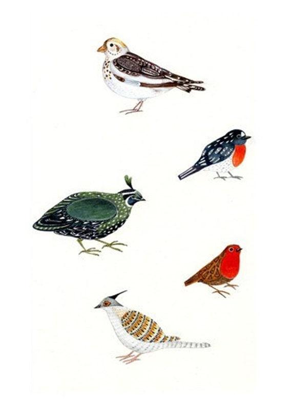 Bird Giclee art print bird illustration print 8x11