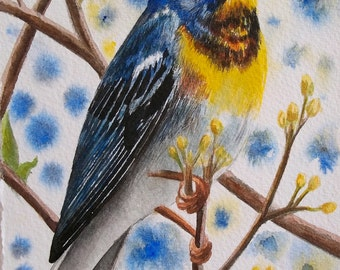 Northern Parula Card