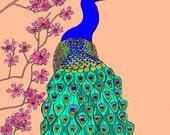 Peacock Art Print A4