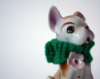 green sweater dog
