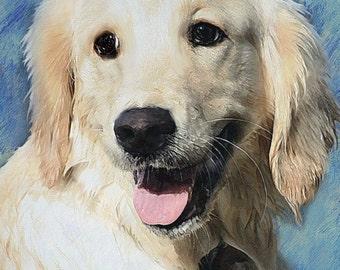 Custom Dog Portrait Golden Retriever