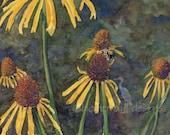 honey bee garden painting- Coneflower Visitor- watercolor art print