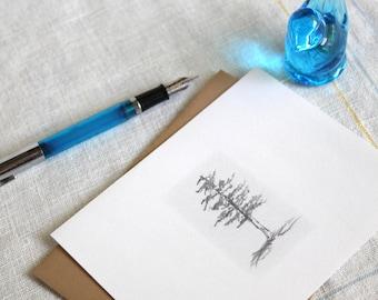 card set- Trees- set of 8 sketch art cards