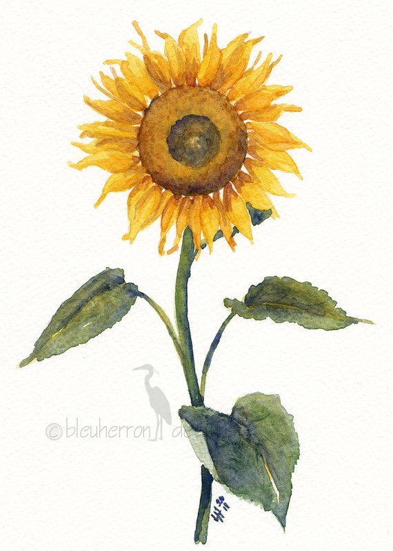 painting- Sunflower- watercolor print
