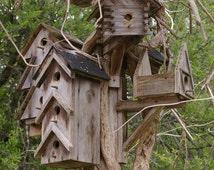 Birdhouse Condo 5x7 Fine Art Photographic Print Brown Natural home decor