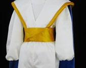 Arabian Prince Custom Costume