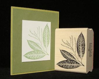 leaf corner rubber stamp