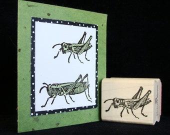 pictureshow rubber stamp, grasshopper no 1