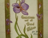 Purple Iris - Greetings and all Good Wishes - July 8, 1908 - Warsaw, Indiana & Buchannon, Michigan - Antique American Postcard
