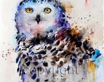 SNOWY OWL Watercolor Bird Art Print By Dean Crouser