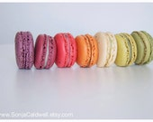 Macaron Rainbow - French Macaroons, food photography, kitchen decor, home decor - 8x12, 10x15, 16x24, or 20x30 Original Fine Art Photograph