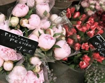 Paris Photography - Peony Photograph - French Romantic Floral Print - Paris Valentines Gift Flower Pink Photo Paris Decor  Feminine Wall Art