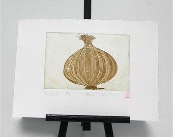 Onion - Original Etching
