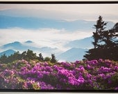 "20x30  ""Grassy Ridge Bald""  one inch Gallery Wrap Canvas Giclee, with Black Float Frame"