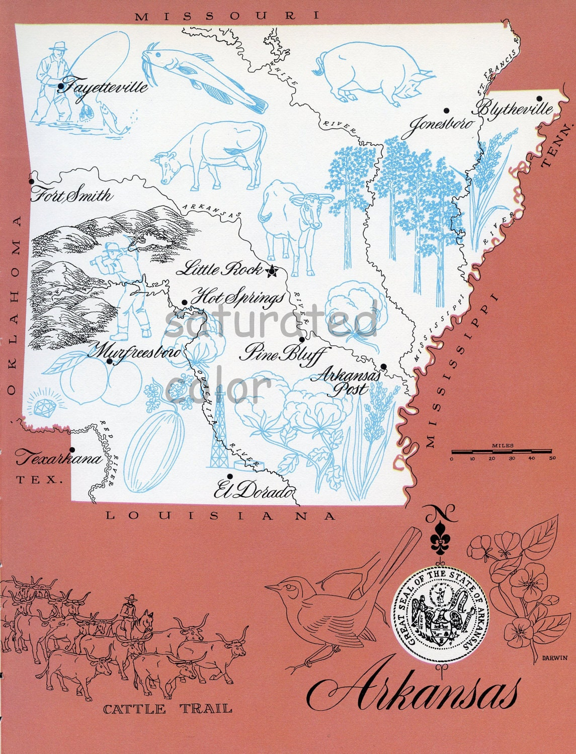 Arkansas Map Original Vintage 1960s Picture Map Fun