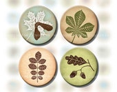 Earthy Tones Forest Leaves 1 inch circle bottle caps images printables for jewelry. Scrapbooking digital sheet for crafters. Autumn colors.