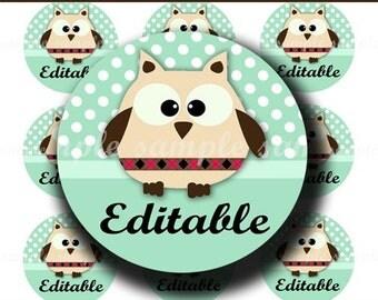INSTANT DOWNLOAD Editable PDF Cute Little Owls (164) 4x6 Bottle Cap Images Digital Collage Sheet for bottlecaps hair bows  bottlecap images