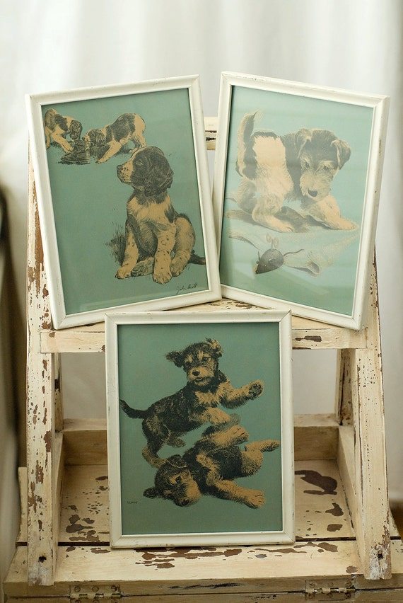 Vintage Shabby Framed Puppy Pictures