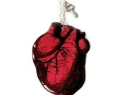 Large Anatomical Heart Necklace Red Anatomy Best Friend Friendship Medical Silver Key Charm