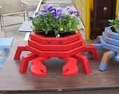 Red Crab Flower Planter