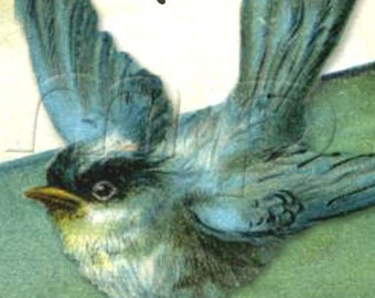 Chickadees -   ADHESIVE - Vintage Bookplate - Bird Lovers - Personalized Bookplate - STICKER