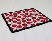 Toy Chalkboard Mat Lady Bug Red Black Reusable Art Toy Girl Homeschool Writing Mat
