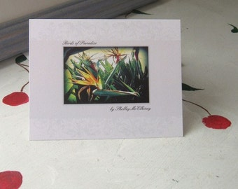 """NOTECARD WRITING SET of 4 Blank Tropical Flowers """"Birds of Paradise"""""""