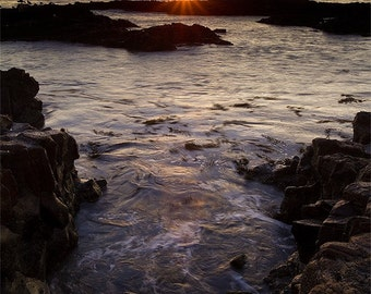 Abalone Cove (Ranchos Palos Verdes, CA)
