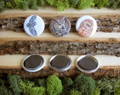 """Owl Magnets - Three Wise Owls - Set of Bird Magnets - 1.5"""""""