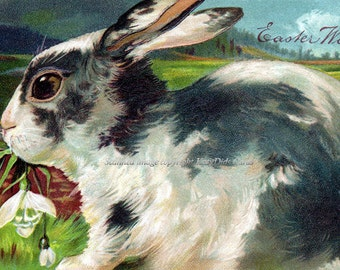 Easter Bunny Card Rabbit w Snowdrops Repro Greeting Card