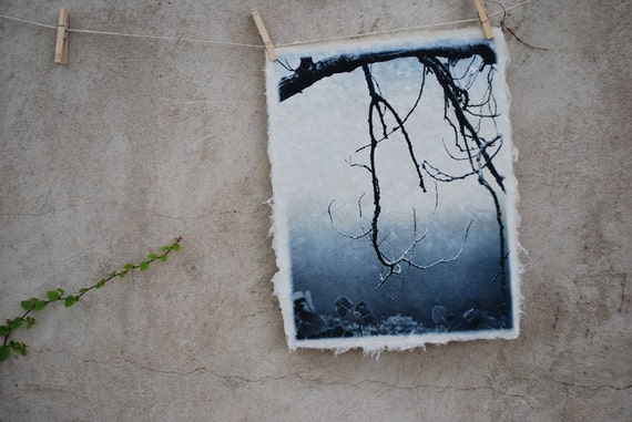 Branch Silouette, art print etching solarplate on handmade paper