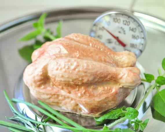 Turkey Soap  - Vegan Soap - Funny Dad soap - Chicken soap - man soap - Hostess gift - Orange Cinnamon Clove Spice