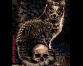 Skull Cat Gothic Print Steampunk 13x19  kitten feline Skelanimal Tattoo halloween Fine Art Canvas Print  Kutna Hora  horror Vena Kava