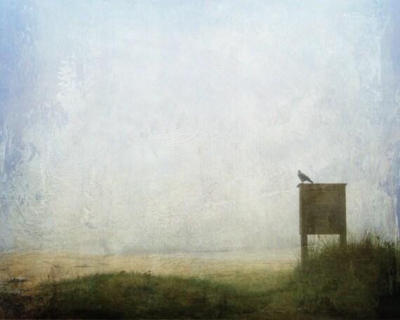 Beach photography, crow photo, whimsical picture, bird photography, minimalist Scandinavian art, 8x10 photograph