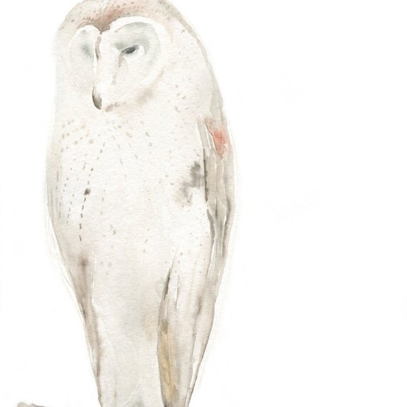 Owl  Painting Original Watercolor Painting