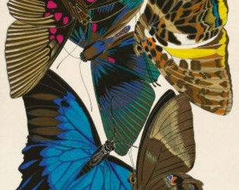 Butterfly Collection I - Cross stitch pattern pdf format