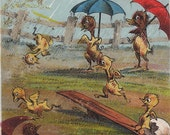 Silly Ducks in the Rain- Victorian- 1800s Vintage Trade Card