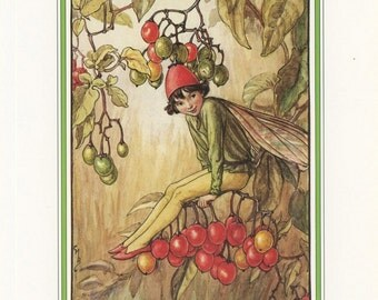 Fairy Art, Nightshade Berry Hedgerow Fairy, Flower Fairies Of The Countryside, Cicely Mary Barker, Antique Print, USA, 1989