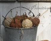 Pumpkins & Gourds, E-pattern, Primitive, Folk Art, Fall, Halloween, Thanksgiving, Harvest, PDF pattern by Walnut Ridge Primitives
