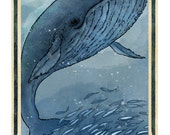 Blue Whale Poster, Wildlife Sea Art - Archival Art Print LARGE 11 x 17