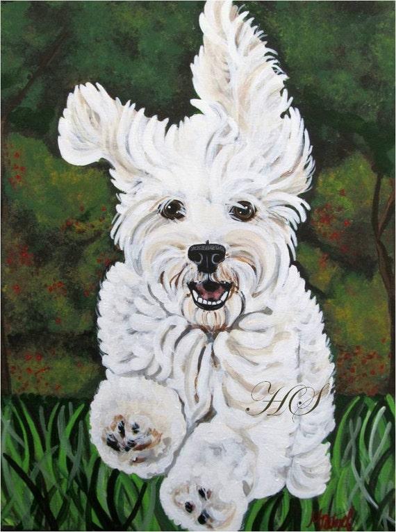 Black And White Pet Portrait
