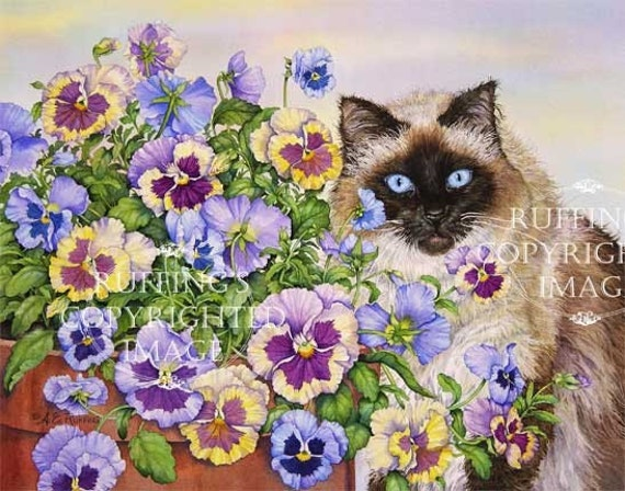 Ragdoll Cat and Pansies Giclee Fine Art Print, Floral, Lavender, Blue, Yellow, Signed A E Ruffing, on 8.5 x 11 inch art paper