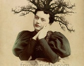Surreal Art, Branches in Hair Art, Victorian Art, Unusual Print, Twiggy, Weird Hair Art, Altered Portrait