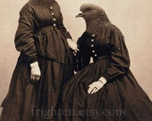 Pigeon Art, Pigeon Sisters, Mixed Media Collage Art, Two Sisters Art, Hybrid, Anthropomorphic Bird Art Print