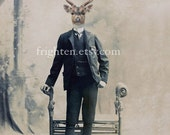 Deer in Suit Art, Mixed Media Collage, Animal in Clothes, Stag Art, Victorian Man, Anthropomorphic Art