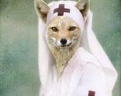 Fox Art, Nurse Art, Red Cross Nurse, Animal in Dress, Anthropomorphic, Vintage Photography, Animal in Clothes, 8x10 Print, Nurse Gift