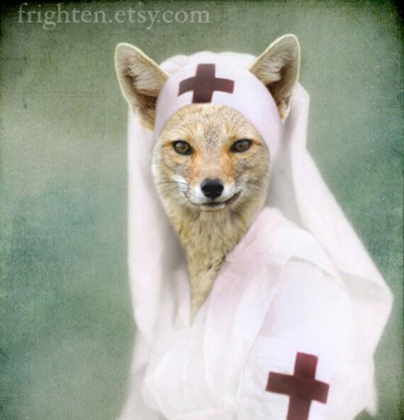 Fox Art, Nurse Art, Red Cross Nurse, Anthropomorphic, Vintage Photography, Animal in Clothes, 8x10 Print