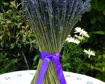 Dried lavender sheaf